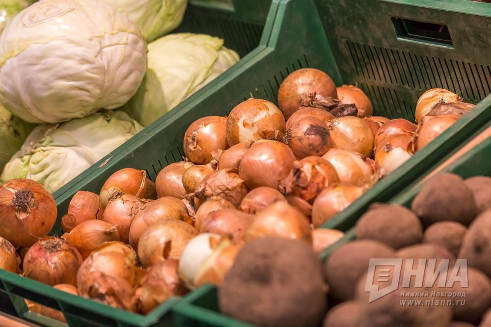 Выставка товаров местных разработчиков «Осеннее плодородие» пройдет наНижегородской ярмарке 15