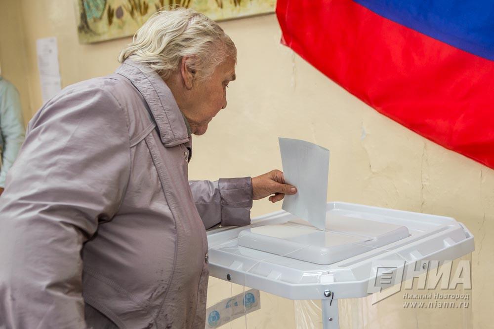 ВНижегородской области явка навыборы на10:00 составила 5%