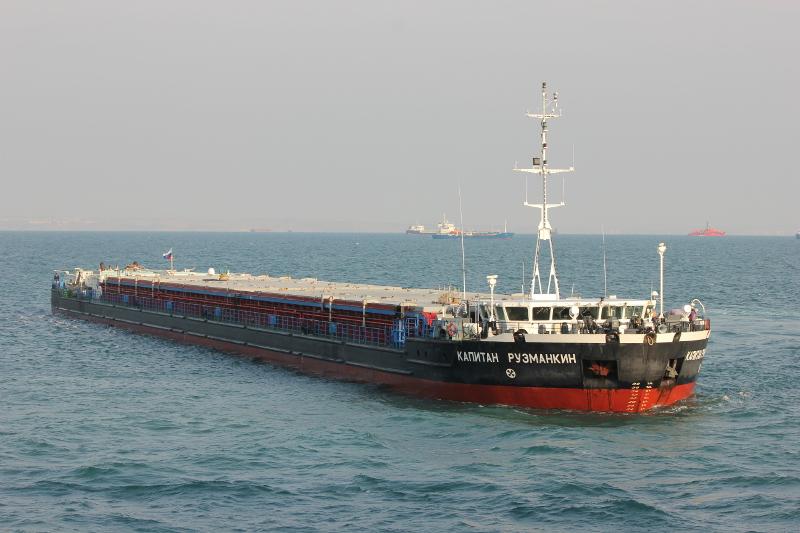 «Волжское пароходство» снизило транспортировку грузов по Российской Федерации на26%