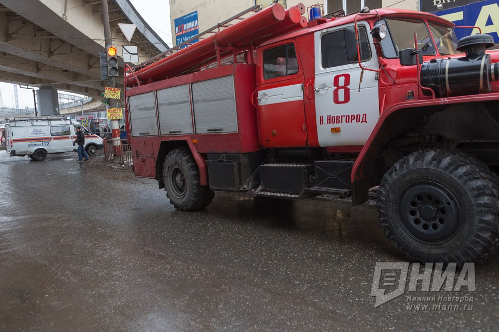 Три поросенка погибли напожаре вКовернинском районе
