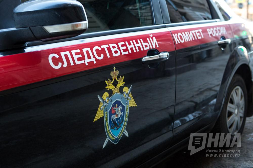 ВНижнем Новгороде найдено тело малыша всумке