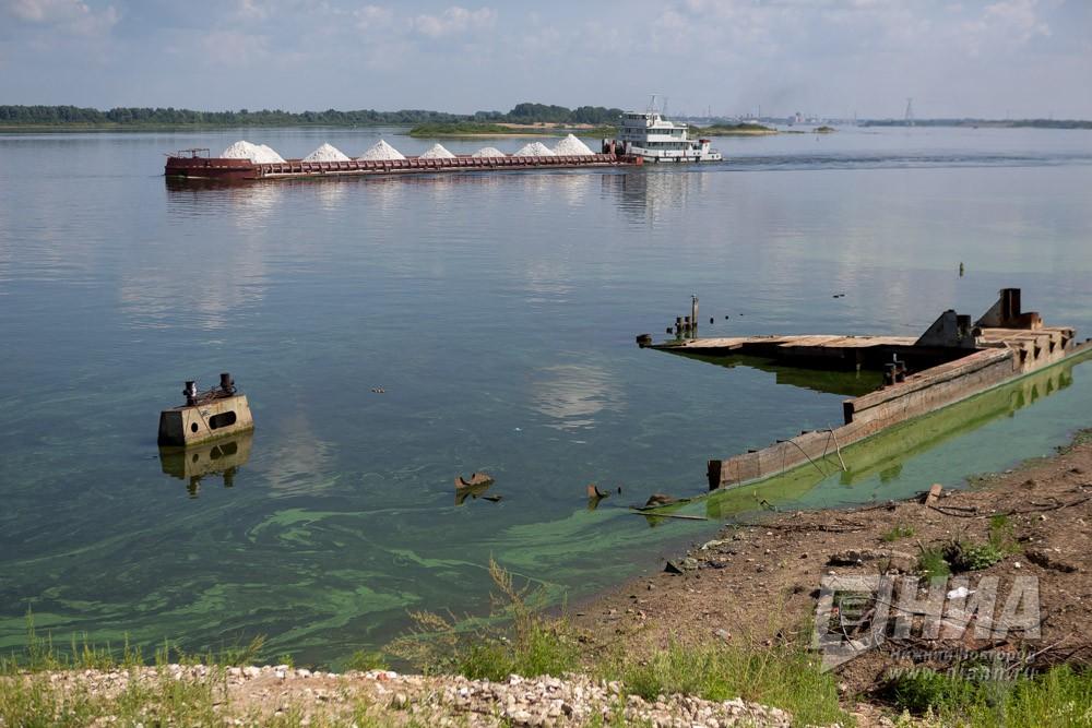 Руководство РФутвердило паспорт проекта «Сохранение ипредотвращение загрязнения реки Волги»