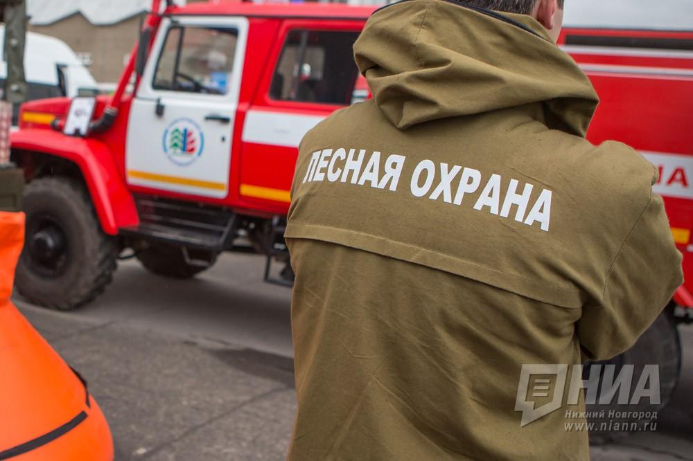ВНижегородской области снят особый противопожарный режим