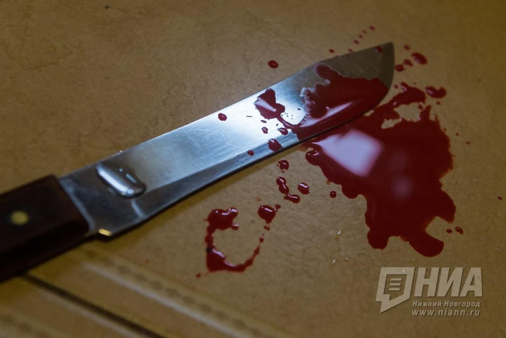 ВНижегородской области мужчина зарезал друга, поссорившись сним из-за телевизора
