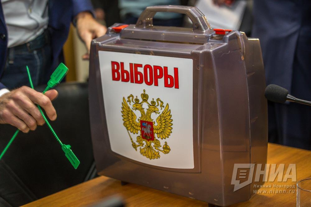 ВНижегородской области выборы президента проконтролируют 2 500 наблюдателей