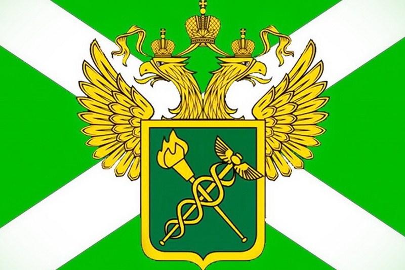 Первая в Российской Федерации электронная таможня будет открыта вНижнем Новгороде ксередине осени