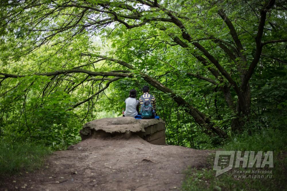 Нижегородский парк «Швейцария» обработают против клещей