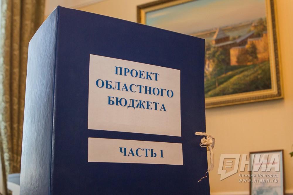 Глеб Никитин внес в ЗС НО проект поправок в бюджет на 2019 год