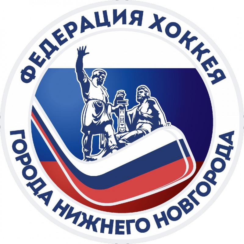 Следж-хоккей для взрослых планируется развивать в Нижегородской области