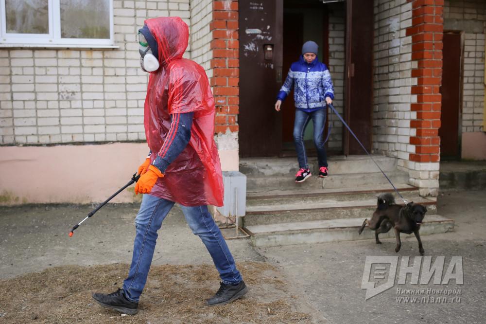 Заболевших COVID-19 за прошедшие сутки не выявлено в 24 районах Нижегородской области